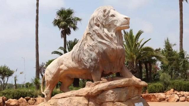 افضل 5 انشطة في حديقة حيوانات الرباط المغرب رحلاتك