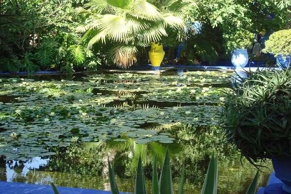 حديقة ماجوريل في مراكش من اهم حدائق السياحة في المغرب