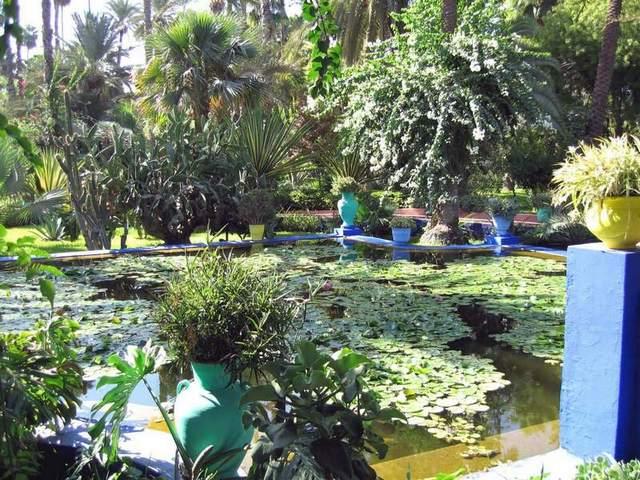 حديقة ماجوريل مراكش - من اجمل حدائق مراكش المغرب