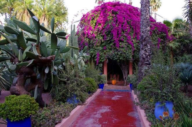 حديقة ماجوريل من اهم الاماكن السياحية في مراكش