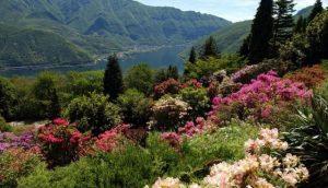 تعرف في المقال على افضل الانشطة في منتزه سان جراتو لوغانو سويسرا