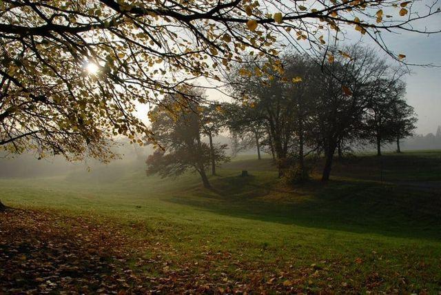 منتزه برينسيس ليفربول من اجمل حدائق ليفربول انجلترا