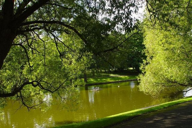 منتزه برينسيس ليفربول من اجمل الاماكن السياحية في ليفربول انجلترا