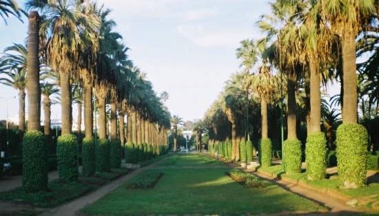 السياحة في الدار البيضاء المغرب