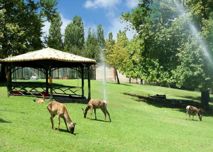 حديقة ميلات طهران
