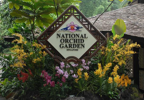 حديقة الاوركيد الوطنية في سنغافورة