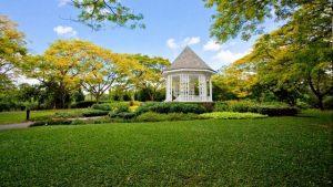تعرف في المقال على افضل الانشطة السياحية في حديقة سنغافورة النباتية ، بالإضافة الى افضل فنادق سنغافورة القريبة منها