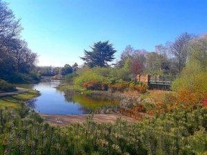 حديقة ستانلي من اجمل الاماكن السياحية في ليفربول انجلترا