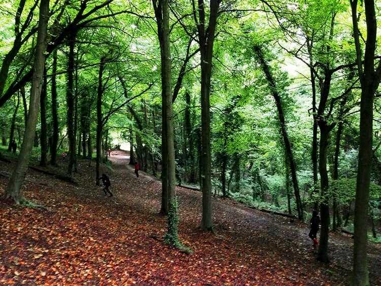 منتزه ستانمر من اجمل اماكن السياحة في برايتون انجلترا