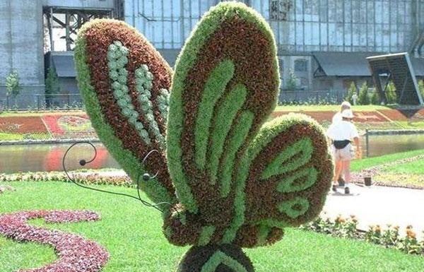 حديقة الفراشات في دبي من اجمل حدائق دبي السياحية