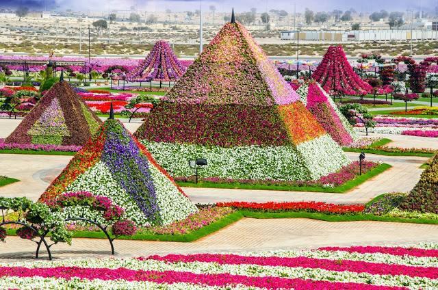تعد حديقة الزهور من اجمل حدائق دبي والتي تتميز بتصاميمها الرائعة