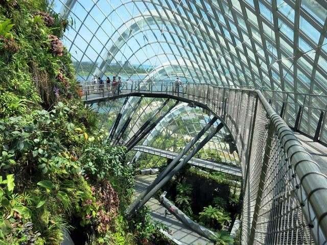 حدائق الخليج في سنغافورة من افضل اماكن السياحة في سنغافورة