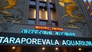 اكواريوم تارابوريوالا من افضل اماكن السياحة في مومباي