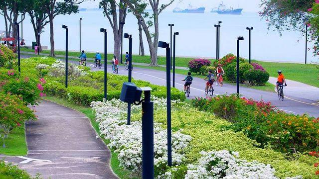 منتزه الساحل الشرقي في مدينة سنغافورة