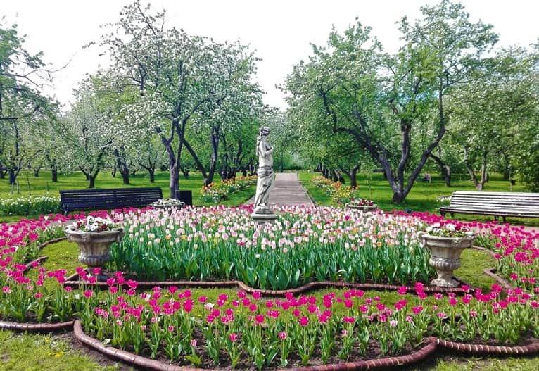 منتزه كولومينسكوي موسكو