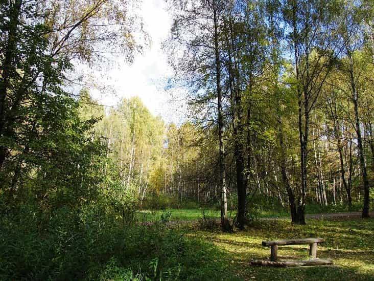حديقة لوزيني القومية موسكو