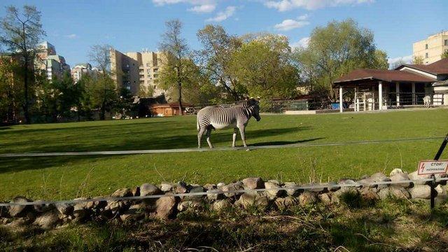 حديقة حيوانات موسكو من اشهر اماكن السياحة في روسيا