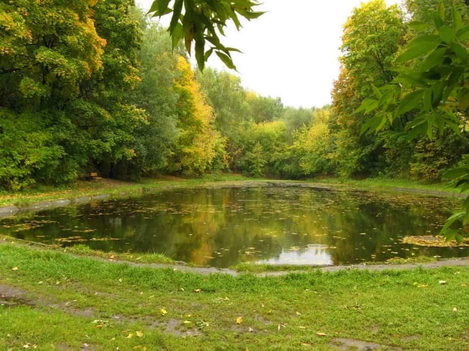 حديقة نيسكوشني موسكو