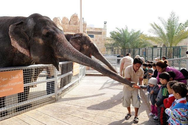 حديقة حيوانات ابوظبي تضم العديد من فعاليات ابوظبي الشيّقة