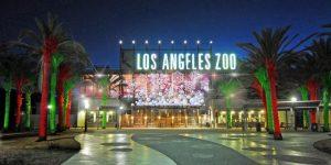 تعرف في المقال على افضل الانشطة السياحية في حديقة حيوان لوس انجلوس ، بالإضافة الى افضل فنادق لوس انجلوس القريبة منها