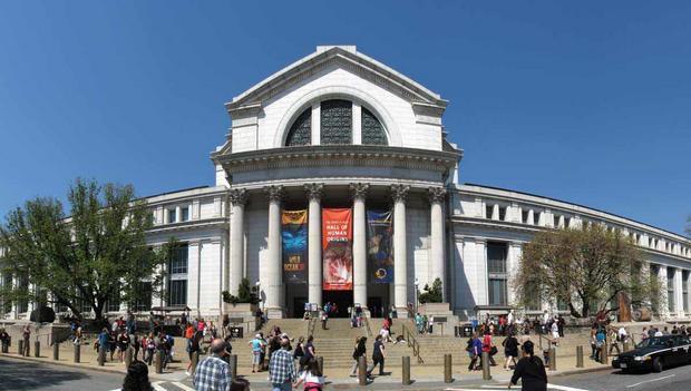 المتحف الوطني للتاريخ الطبيعي واشنطن