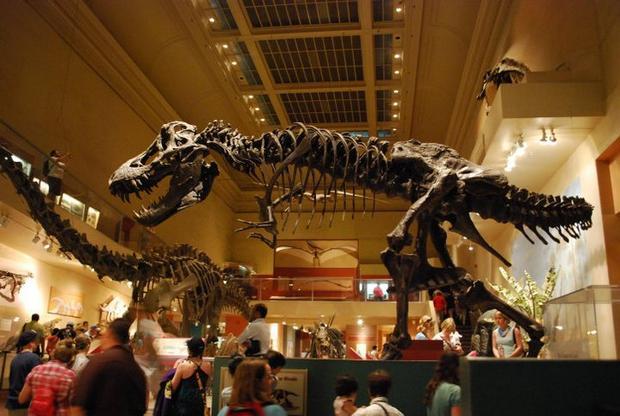 المتحف الوطني للتاريخ الطبيعي في واشنطن