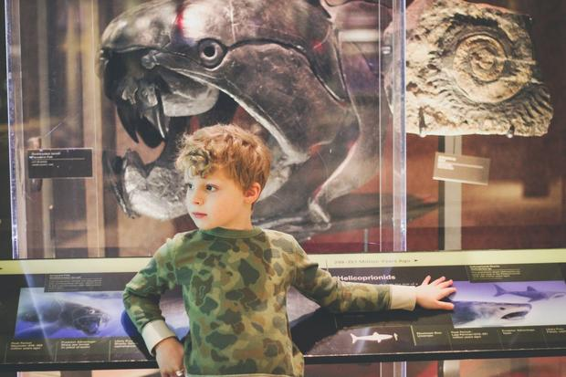 المتحف الوطني للتاريخ الطبيعي من افضل اماكن السياحة في واشنطن دي سي