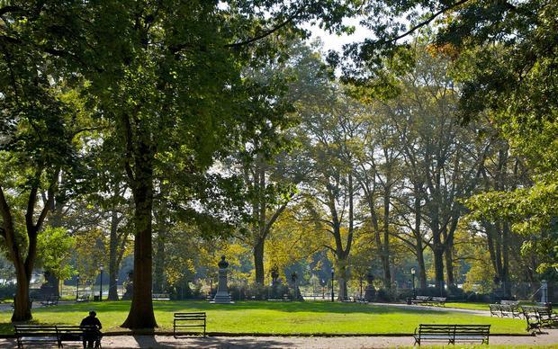 منتزه بروسبكت بارك من اهم الاماكن السياحية في نيويورك امريكا