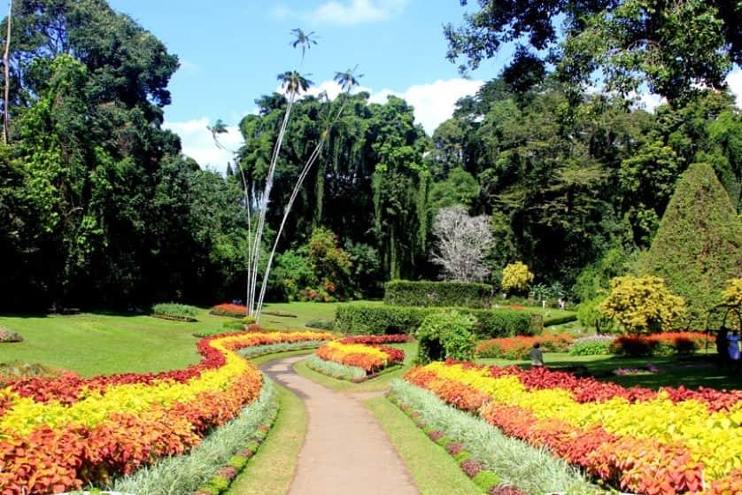 الحديقة النباتية الملكية بسريلانكا
