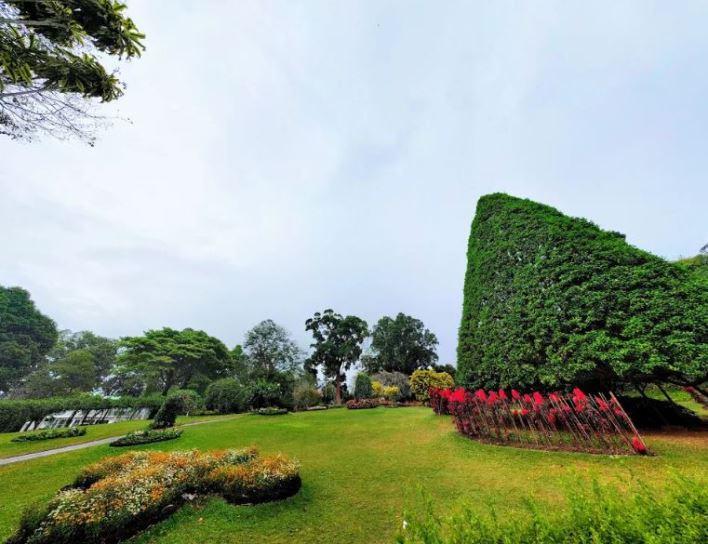 الحديقة النباتية الملكية من اجمل اماكن سياحية في كاندي سريلانكا