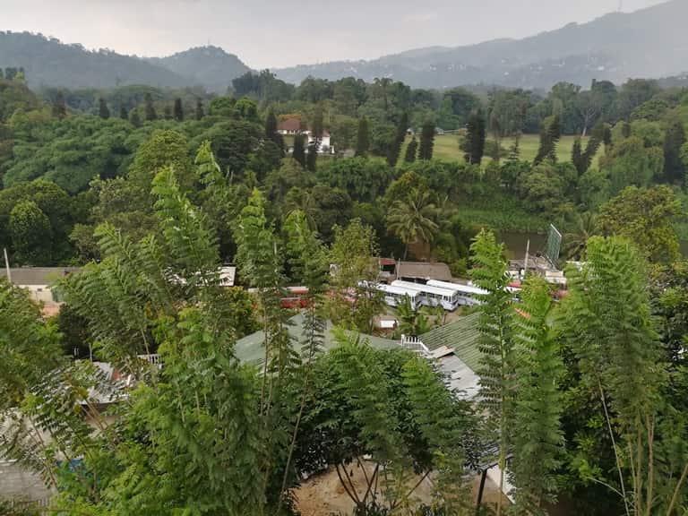 الحديقة النباتية الملكية كاندي