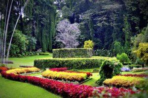 تعرف في المقال على افضل الانشطة السياحية في الحديقة النباتية الملكية كاندي ، بالإضافة الى افضل فنادق كاندي القريبة منها