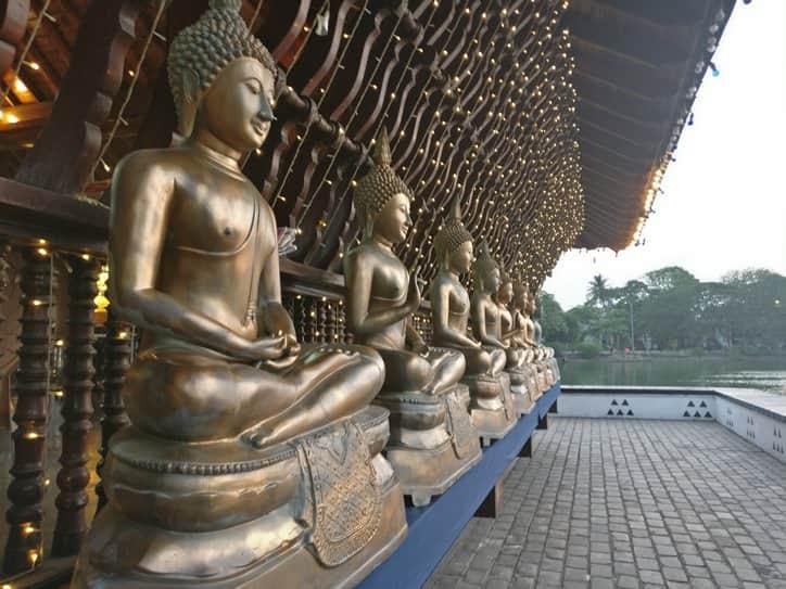حديقة فيهاراماهاديفي في كولومبو سريلانكا
