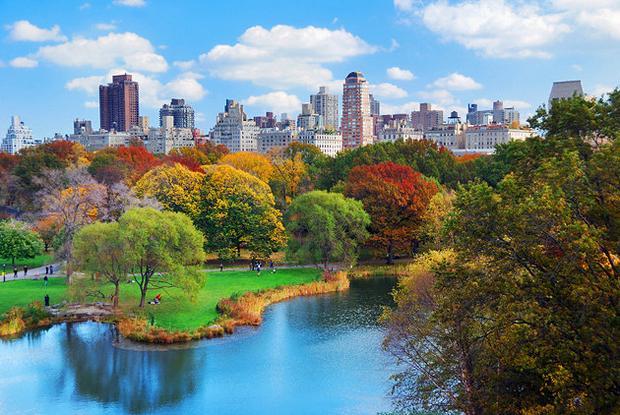 حديقة سنترال بارك في نيويورك