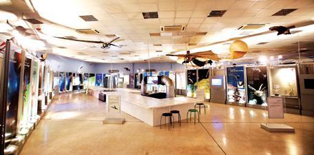 متحف المحطة من افضل الاماكن السياحية في الشارقة الامارات