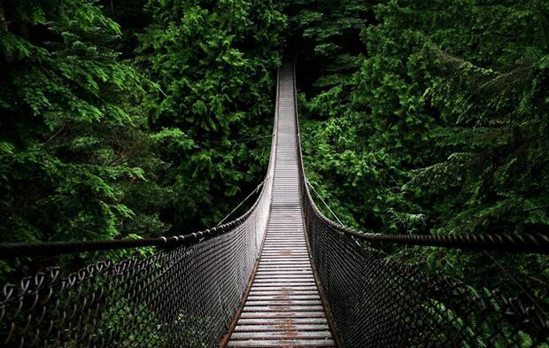 جسر كابيلانو في فانكوفر كندا