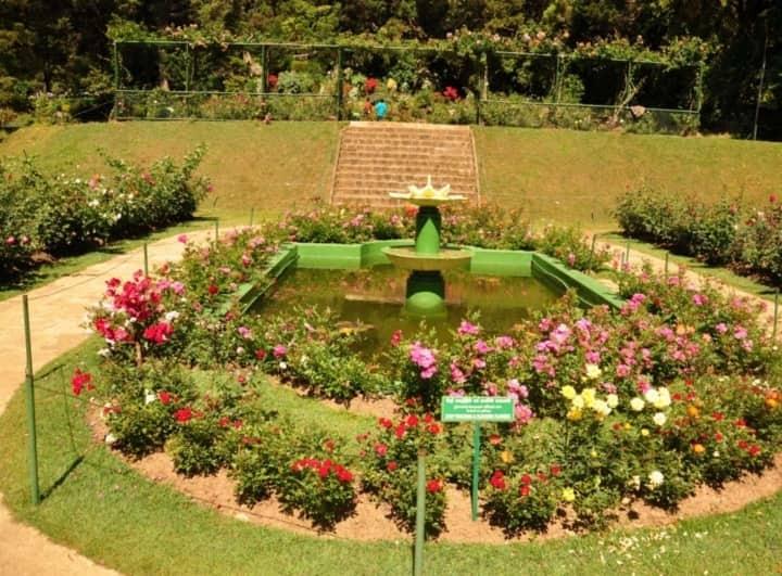 حديقة هاكغالا النباتية في نوراليا