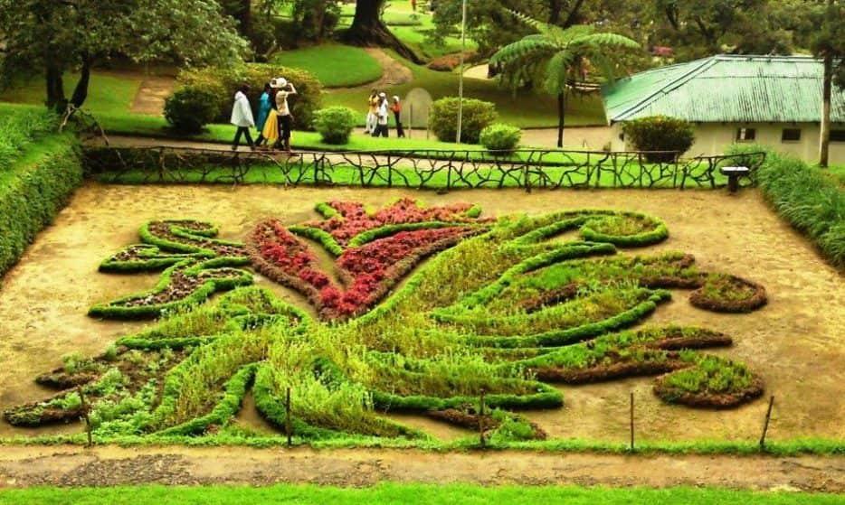 حديقة هاكغالا النباتية في سريلانكا نوراليا
