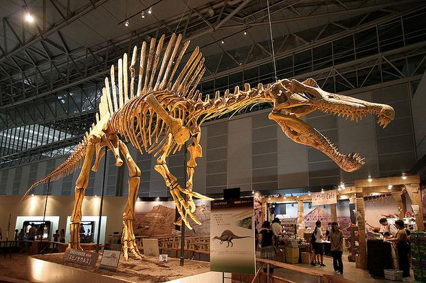 متحف هونغ كونغ للعلوم  من اجمل متاحف هونغ كونغ