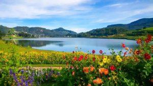 تعرف في المقال على افضل الانشطة السياحية في بحيرة جريجوري نوراليا ، بالإضافة الى افضل فنادق نوراليا القريبة منها