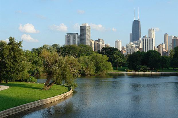 حديقة الحيوانات في شيكاغو