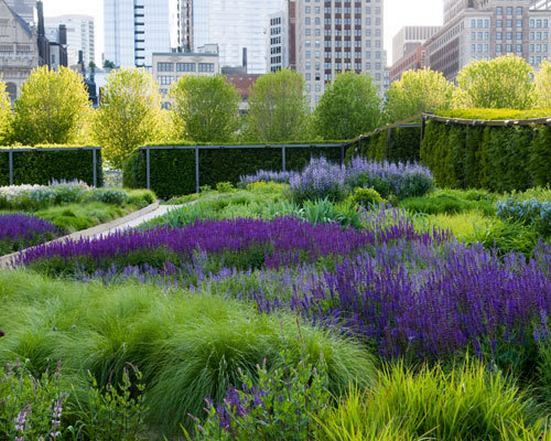 حديقة ميلينيوم بارك شيكاغو