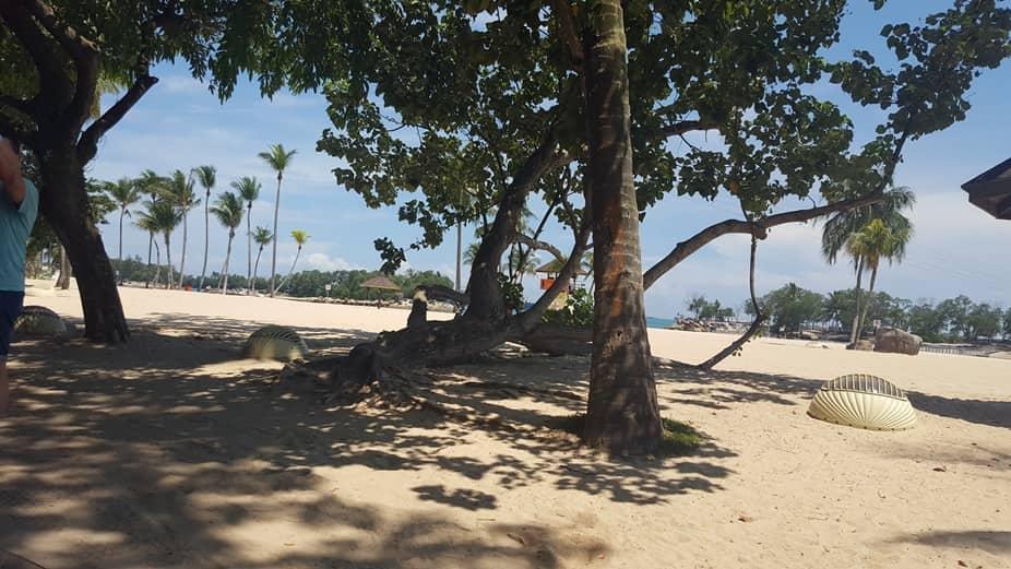 منتزه ميجا ادفنتشور من افضل الاماكن السياحية في سنتوسا