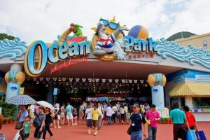تعرف في المقال على افضل الانشطة السياحية في حديقة المحيط في هونغ كونغ الصين ، بالإضافة الى افضل فنادق هونغ كونغ القريبة منها