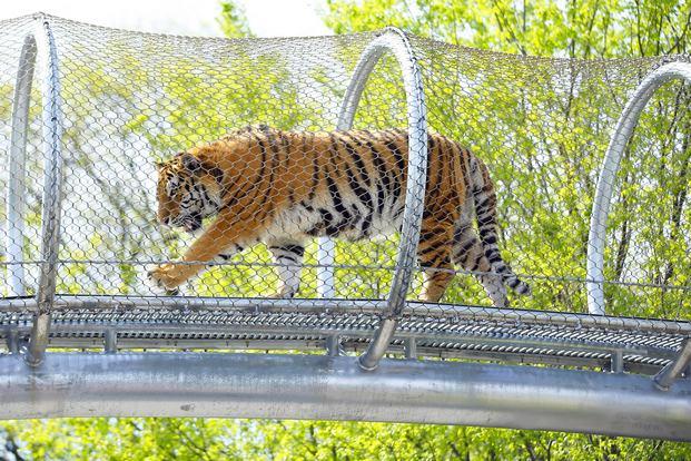 تعد حديقة الحيوانات في فيلادلفيا من اجمل اماكن السياحة في امريكا