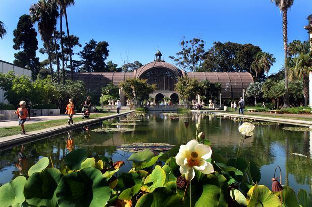 حديقة حيوانات سان دييغو من افضل اماكن السياحة في امريكا