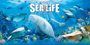 اكواريوم سيدني للحياة البحرية