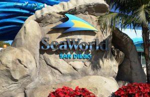تعرف في المقال على افضل الانشطة السياحية في عالم البحار سان دييغو ، بالإضافة الى افضل فنادق سان دييغو القريبة منه