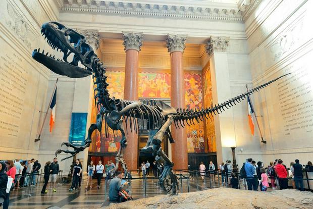 المتحف الأمريكي للتاريخ الطبيعي من افضل اماكن سياحية في نيويورك
