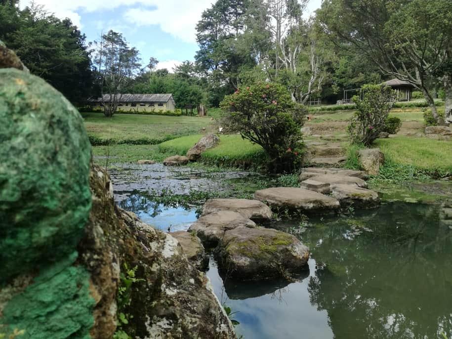 حديقة فيكتوريا نوراليا